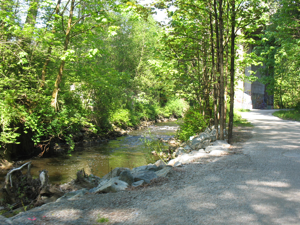 The bike path along the Brunette River.