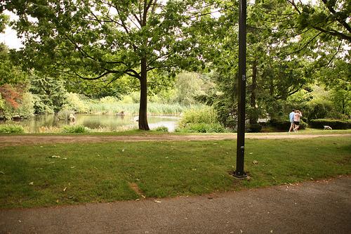 Charleson Park. Photo by <a href=http://www.flickr.com/photos/fujitariuji/3670377599/>fujitariuji</a>.