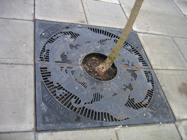 Unique tree grates were installed when pavement-heaving trees were replaced as part of sidewalk reconstruction on Main Street.