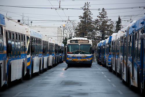 One of our extra Olympic buses out at Oakridge Transit Centre. Photo by Charlotte Boychuk.