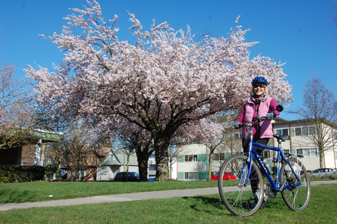 Take a Great Ride on Saturday and see the cherry blossoms in Vancouver!