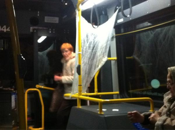 cobwebs on the bus