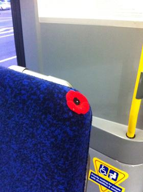 Poppy stuck on a bus seat