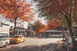Bus during fall in Kitsilano