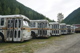 A row of Brill trolley buses in Sandon