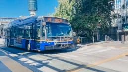 CMBC Shelter Bus